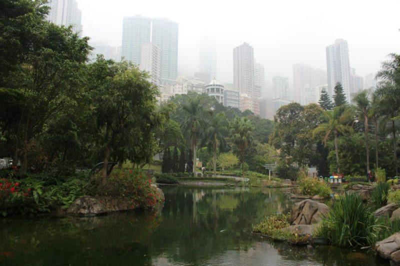 hongkonglake