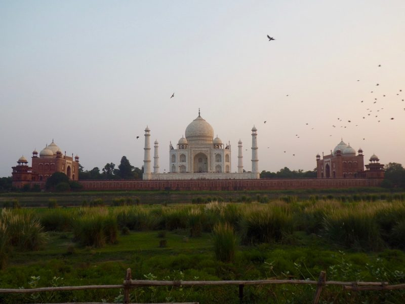 a view of the taj mahal from the River Yamuna