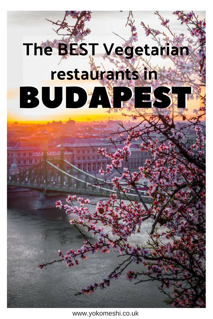 The BEST Vegetarian restaurants in budapest