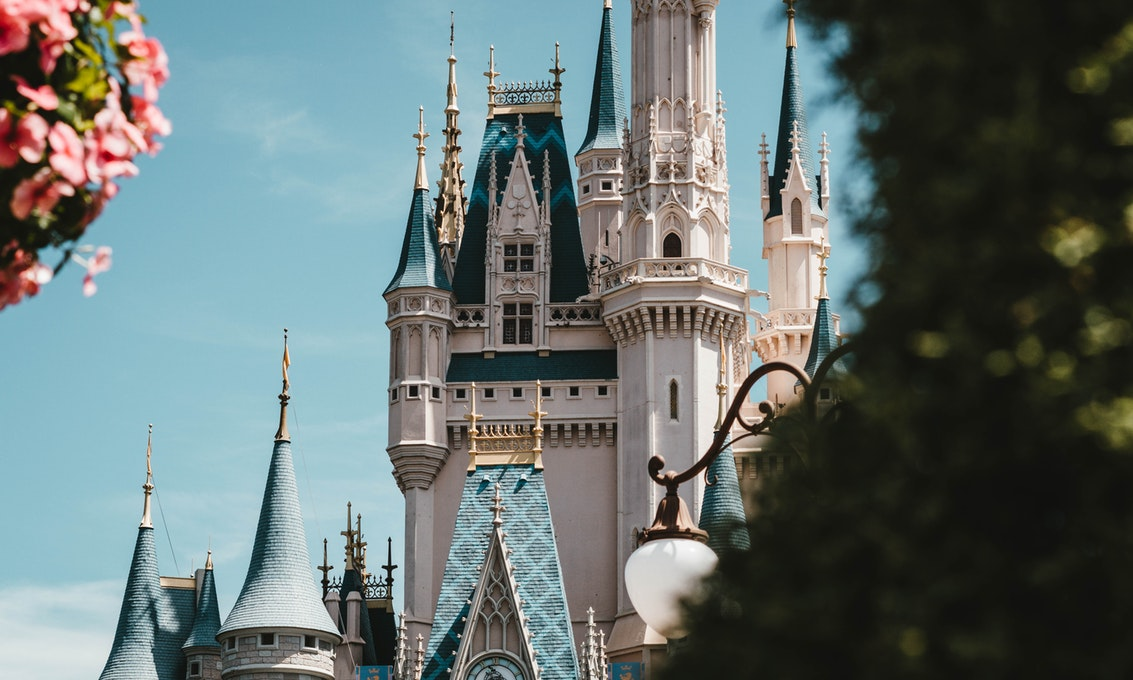 view of the disney world castle