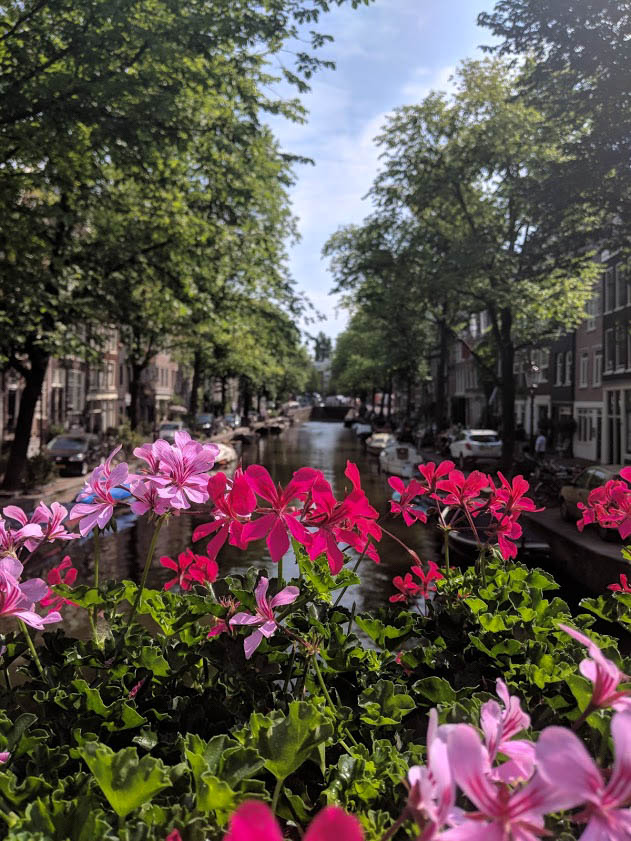 Jordaan in amsterdam is a great place to get photos of the canals and flowers without the tourists