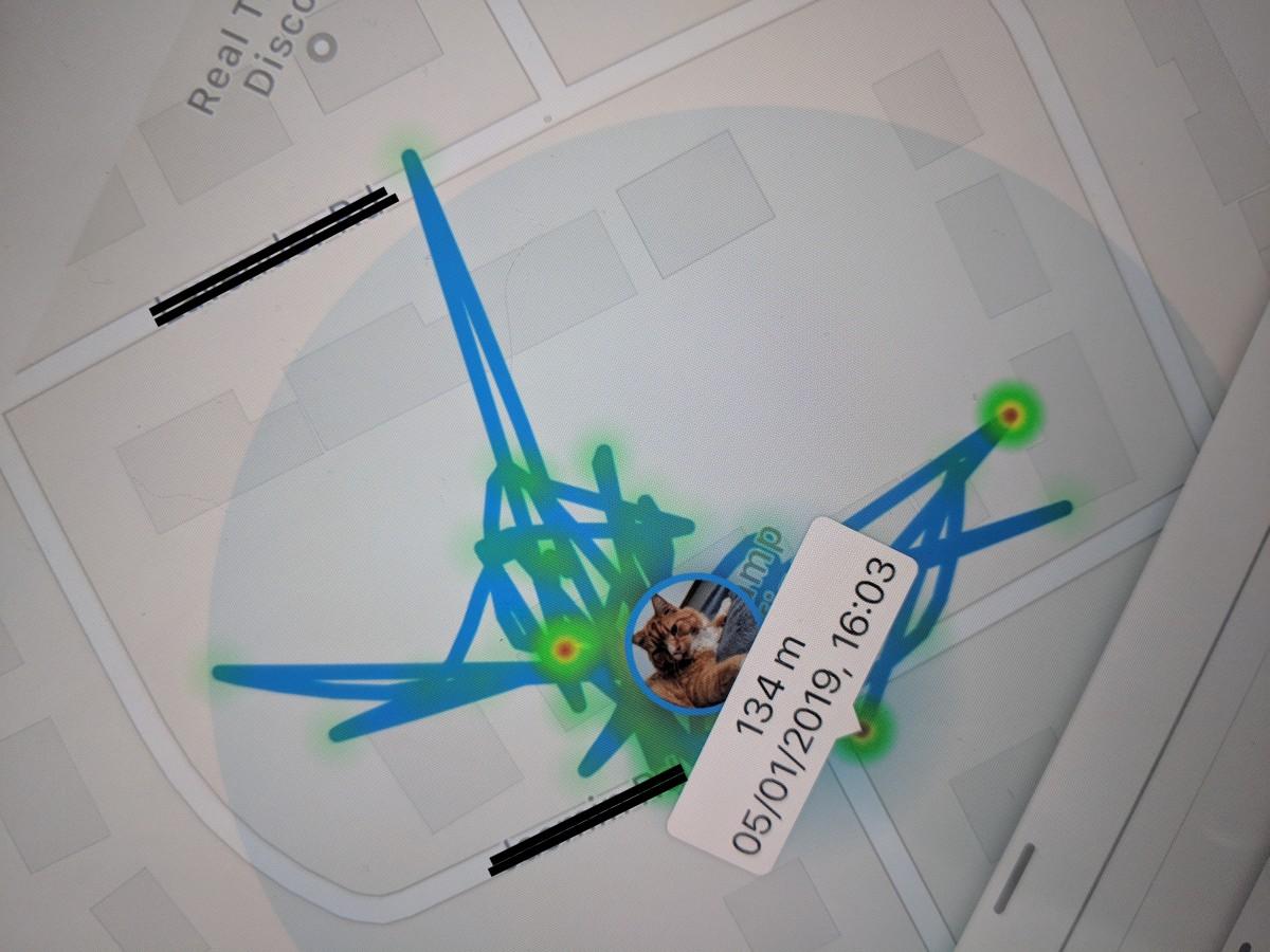 carte de localisation comprenant les points chauds sur l'application de collier Tractive GPS