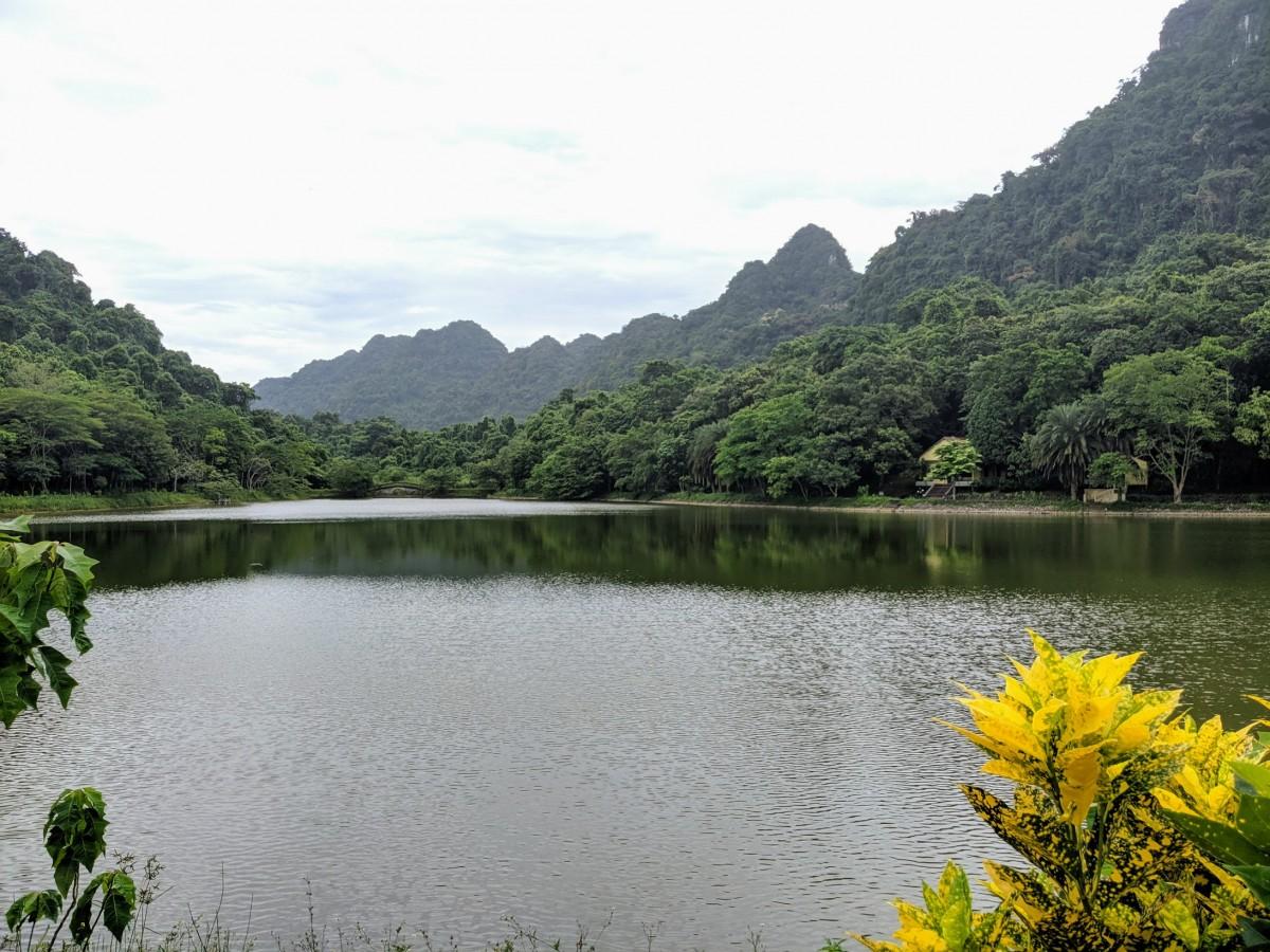 coc phoung national park, ninh binh