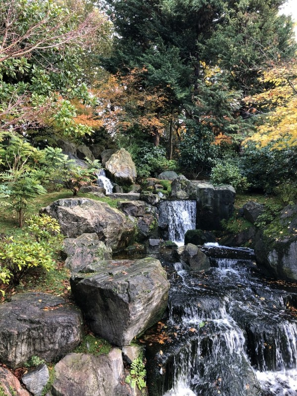 holland park kyoto garden - a japanese garden in london